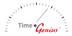 Time Genius 250x125
