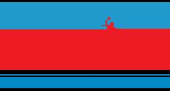 demiri_paiting_decorating_logo